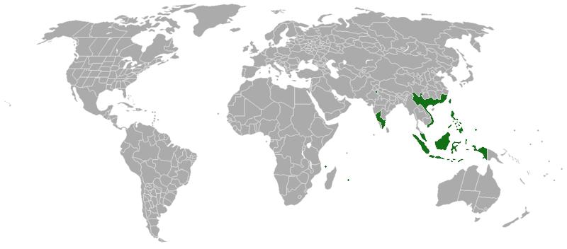 Acacia confusa growing range map